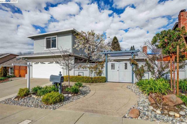 1279 Vintner Way, Pleasanton, CA 94566 (#40853393) :: J. Rockcliff Realtors