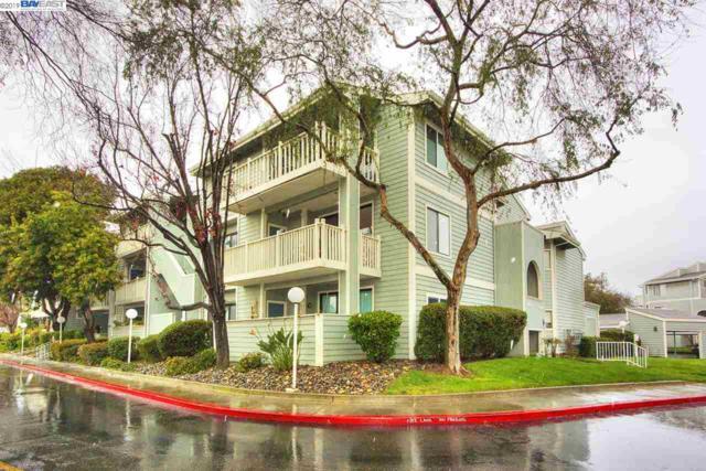 37248 Meadowbrook Cmn #204, Fremont, CA 94536 (#40853645) :: Armario Venema Homes Real Estate Team