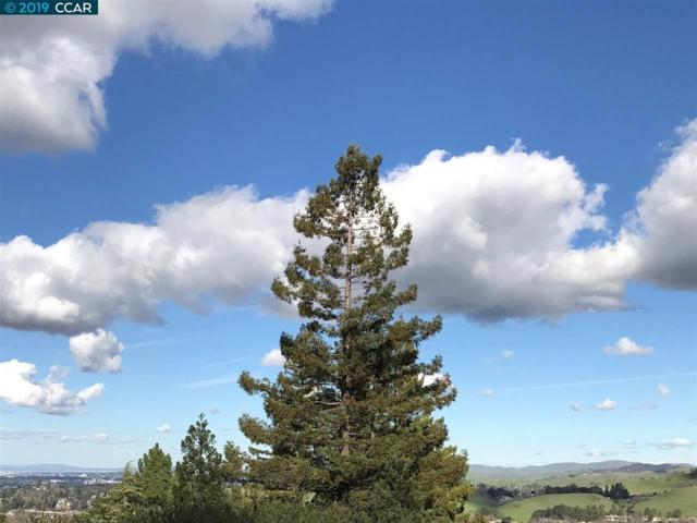 3266 Ptarmigan Dr 1B, Walnut Creek, CA 94595 (#40854053) :: The Grubb Company