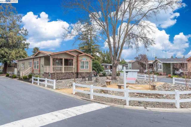 3263 Vineyard Avenue #52, Pleasanton, CA 94566 (#40854939) :: Armario Venema Homes Real Estate Team