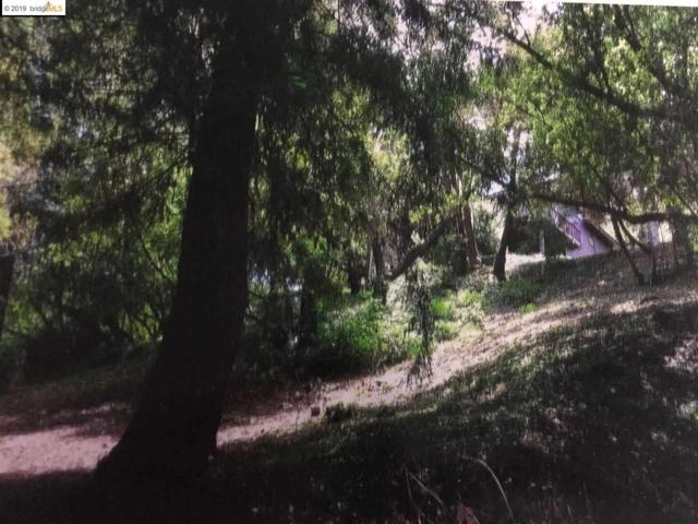 000 Mcbryde Ave, Richmond, CA 94805 (#40855210) :: Armario Venema Homes Real Estate Team