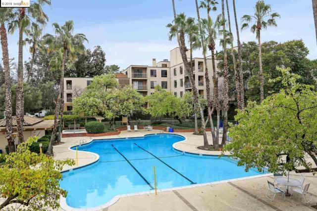 410 N Civic Dr #301, Walnut Creek, CA 94596 (#40855516) :: The Lucas Group