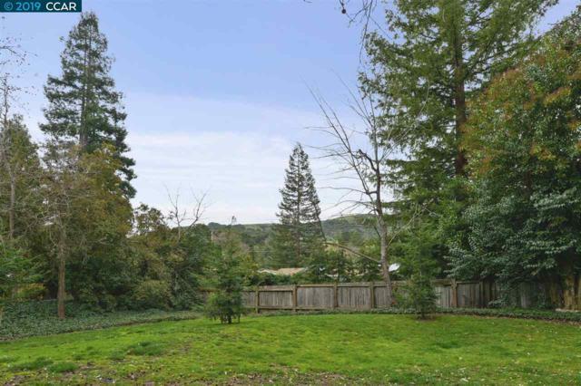 1153 San Ramon Valley Blvd., Danville, CA 94526 (#40855666) :: Armario Venema Homes Real Estate Team