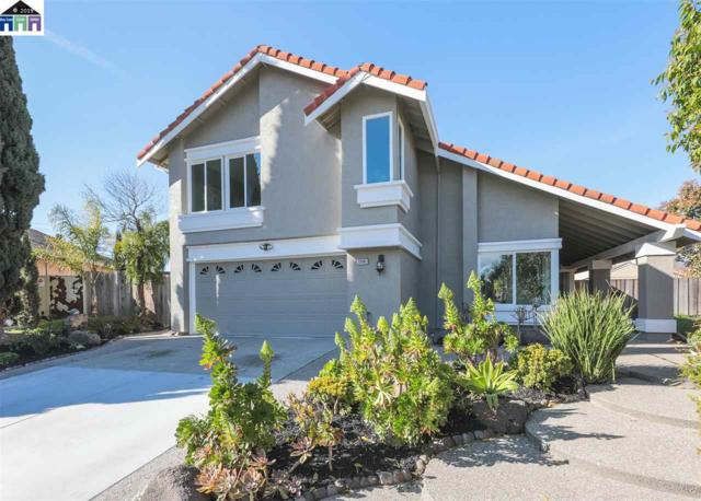 33100 Gull Court, Fremont, CA 94555 (#40856218) :: The Lucas Group