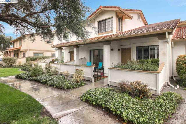 5433 Colony Green Dr, San Jose, CA 95123 (#40856300) :: Armario Venema Homes Real Estate Team