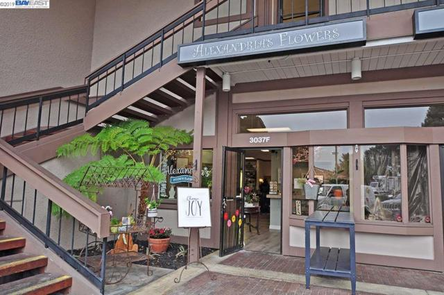 3037 Hopyard Road Suite F, Pleasanton, CA 94588 (#40856351) :: Armario Venema Homes Real Estate Team