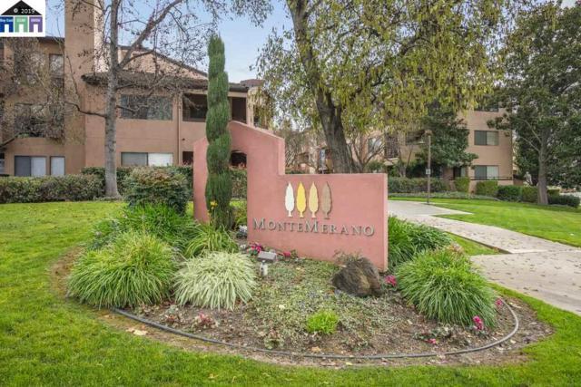 39029 Guardino #313, Fremont, CA 94538 (#40856420) :: Armario Venema Homes Real Estate Team