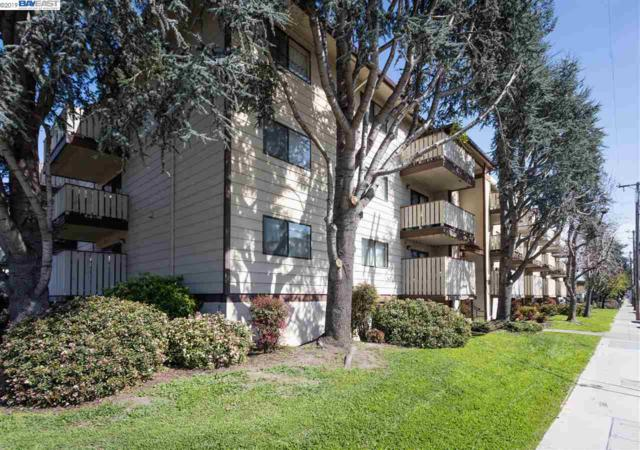 29300 Dixon St #304, Hayward, CA 94544 (#40856583) :: Armario Venema Homes Real Estate Team
