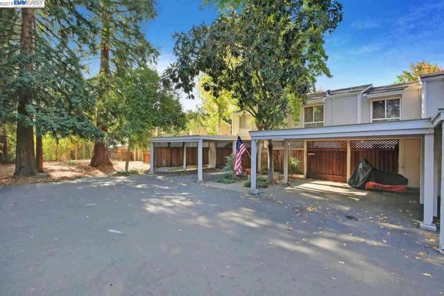 208 Garden Creek Pl, Danville, CA 94526 (#40856729) :: Armario Venema Homes Real Estate Team