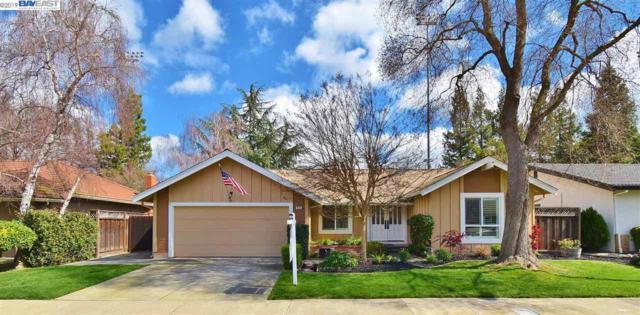 4583 Gatetree Cir, Pleasanton, CA 94566 (#40856803) :: Armario Venema Homes Real Estate Team