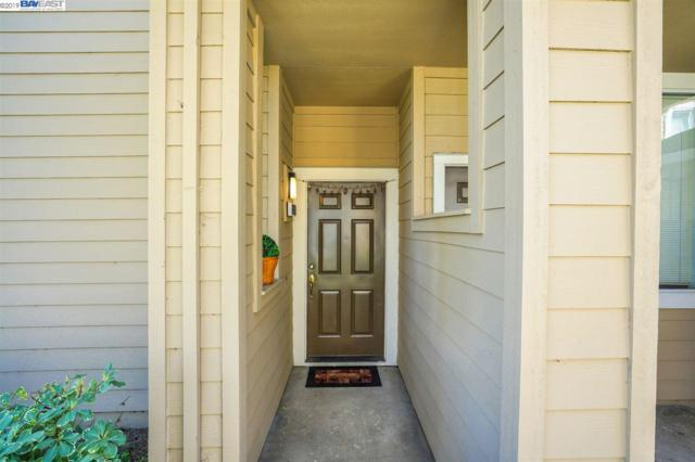 34600 Falls Ter, Fremont, CA 94555 (#40856940) :: The Lucas Group