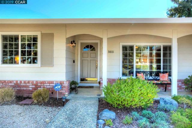 3801 Malibu Pl, Pittsburg, CA 94565 (#40857361) :: The Lucas Group