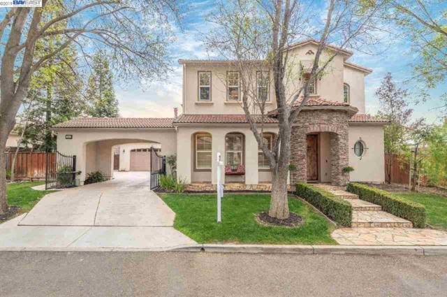 757 Vinci Way, Livermore, CA 94550 (#40857609) :: Armario Venema Homes Real Estate Team
