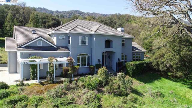 879 Oak Manor Way, Pleasanton, CA 94566 (#40857772) :: Armario Venema Homes Real Estate Team
