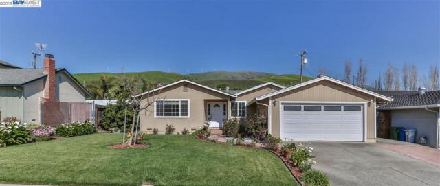 48224 Arcadian Street, Fremont, CA 94539 (#40857785) :: The Lucas Group
