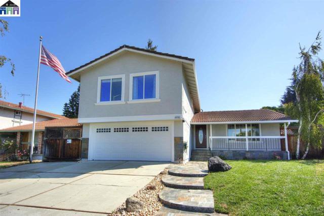 48780 Plomosa Rd, Fremont, CA 94539 (#40858088) :: Armario Venema Homes Real Estate Team
