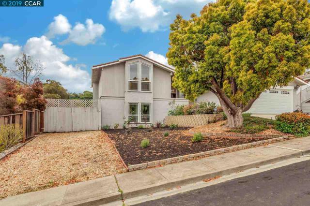 1442 Ramsay Cir, Walnut Creek, CA 94597 (#40859826) :: Armario Venema Homes Real Estate Team