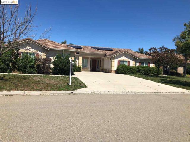 490 Quail Glen Dr, Oakley, CA 94561 (#40861680) :: Armario Venema Homes Real Estate Team