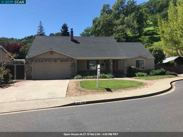 5635 Vineta Ct, Martinez, CA 94553 (#40862024) :: Blue Line Property Group