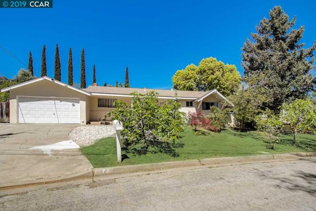 14 Erin Ct, Pleasant Hill, CA 94523 (#40862096) :: Blue Line Property Group