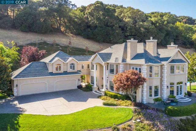114 Stonehurst Ct, Martinez, CA 94553 (#40862126) :: Blue Line Property Group