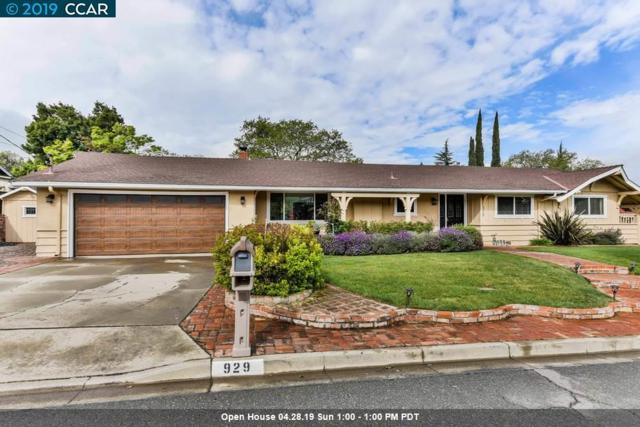 929 Kenston Dr, Clayton, CA 94517 (#40862234) :: Blue Line Property Group