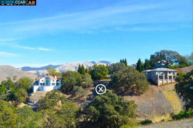 135 Chanticleer Ln, Alamo, CA 94507 (#40862269) :: Armario Venema Homes Real Estate Team