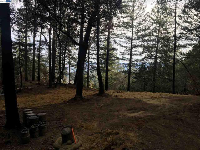 3633 Mt. Veeder Rd., Napa, CA 94558 (#40865139) :: Realty World Property Network