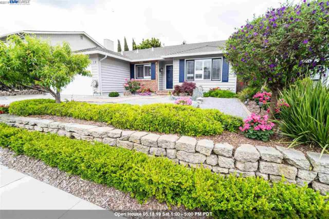 464 Chardonnay Dr, Fremont, CA 94539 (#40866030) :: Armario Venema Homes Real Estate Team
