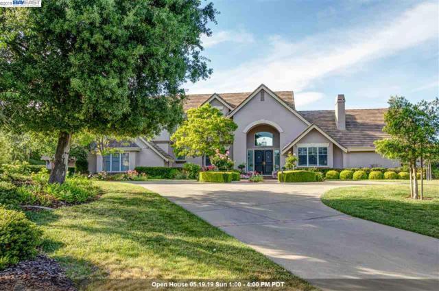 1217 Piemonte Dr, Pleasanton, CA 94566 (#40866066) :: Armario Venema Homes Real Estate Team