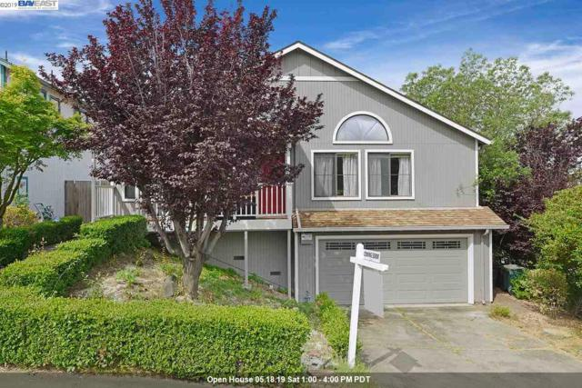 23001 Lakeridge Ave, Hayward, CA 94541 (#40866086) :: Armario Venema Homes Real Estate Team