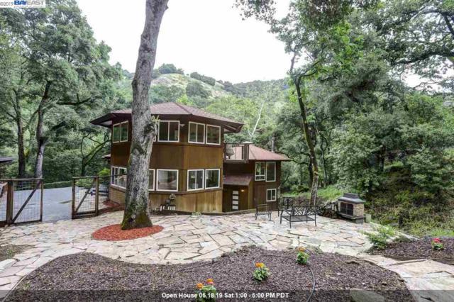2060 Kilkare Rd, Sunol, CA 94586 (#40866351) :: Armario Venema Homes Real Estate Team