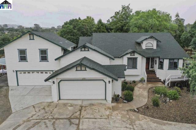 7565 Sparrowk Dr, Valley Springs, CA 95252 (#40866398) :: Armario Venema Homes Real Estate Team