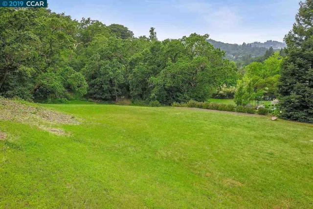 Silver Springs Ct, Lafayette, CA 94549 (#40866517) :: Armario Venema Homes Real Estate Team