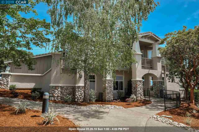 517 Spotted Owl Ct, Walnut Creek, CA 94595 (#40866524) :: The Grubb Company