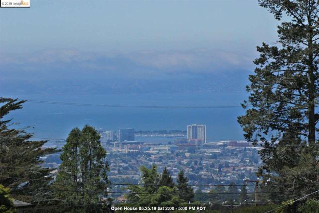 7253 Snake Road, Oakland, CA 94511 (#40866636) :: The Grubb Company