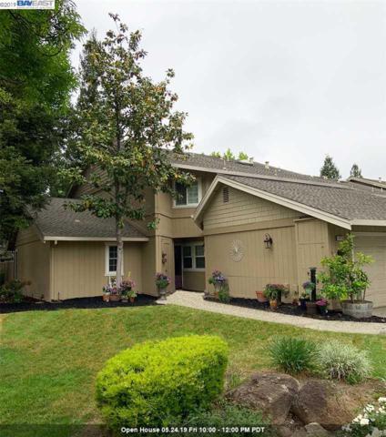 4173 Amberwood Cir, Pleasanton, CA 94588 (#40866882) :: Armario Venema Homes Real Estate Team