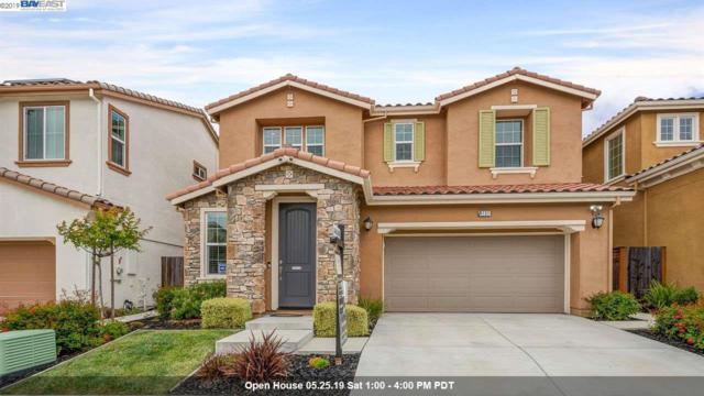 4737 N Spago Dr, Dublin, CA 94568 (#40866915) :: Armario Venema Homes Real Estate Team