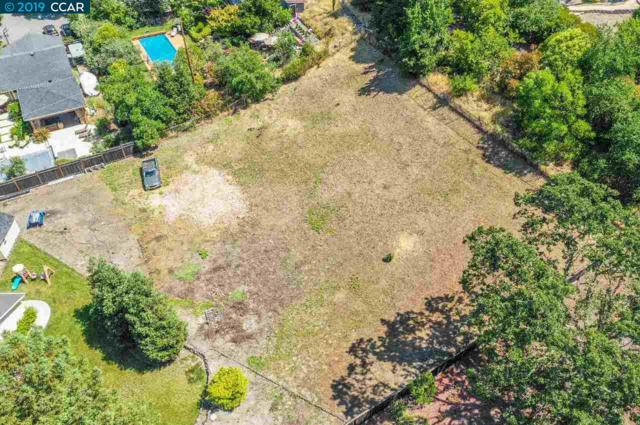 Castle Hill Ranch Rd, Walnut Creek, CA 94595 (#40870234) :: Blue Line Property Group