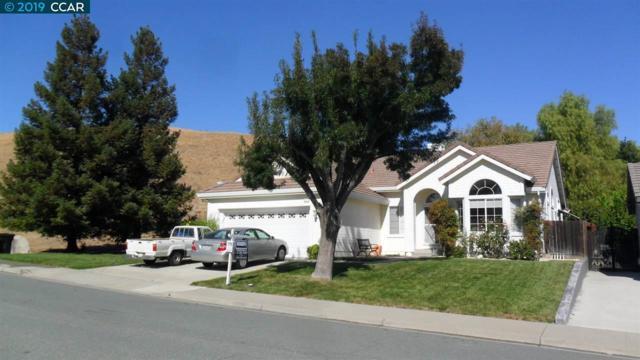 3921 E Larkspur Dr, Antioch, CA 94531 (#40870396) :: Armario Venema Homes Real Estate Team