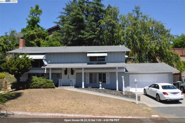 314 Monte Carlo Ave, Union City, CA 94587 (#40870726) :: Armario Venema Homes Real Estate Team