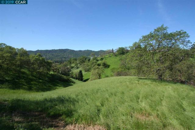 Ohlson Lane, Danville, CA 94526 (#40870727) :: Armario Venema Homes Real Estate Team