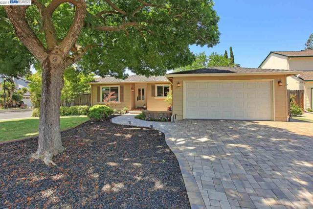 3902 Mount Mckinley Ct, Pleasanton, CA 94588 (#40870942) :: The Lucas Group