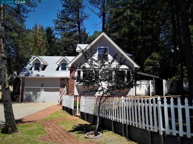11344 Edward, Grass Valley, CA 95949 (#40871584) :: J. Rockcliff Realtors