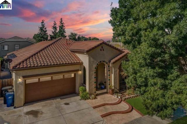 790 Bramblewood, Lathrop, CA 95330 (#40872984) :: Armario Venema Homes Real Estate Team