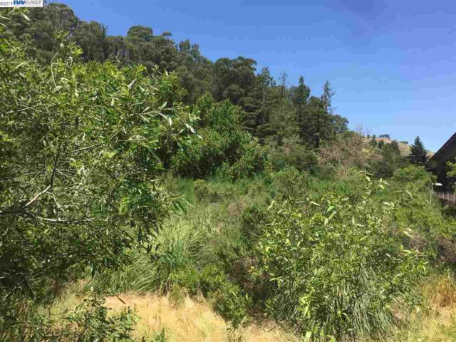 Fraga Rd, Castro Valley, CA 94546 (#40874536) :: J. Rockcliff Realtors