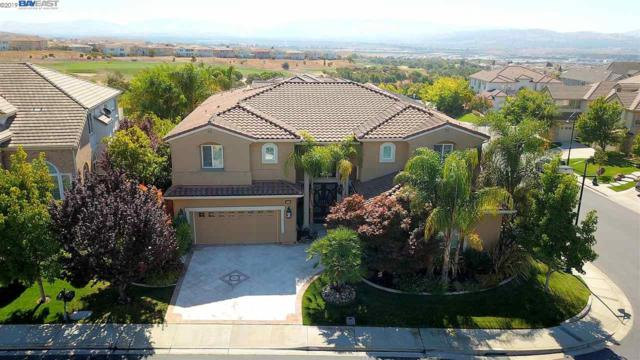 5851 Annandale Way, Dublin, CA 94568 (#40874944) :: Armario Venema Homes Real Estate Team