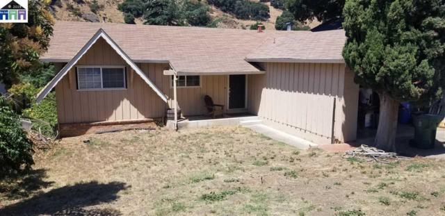 38063 Stenhammer Dr, Fremont, CA 94536 (#40877547) :: Realty World Property Network