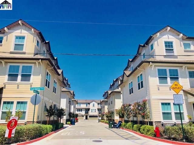 101 Ganesha Cmn, Livermore, CA 94551 (#40879789) :: Armario Venema Homes Real Estate Team