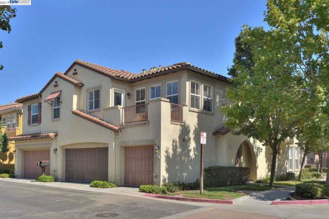 49114 Rose Ter, Fremont, CA 94539 (#40882844) :: The Grubb Company